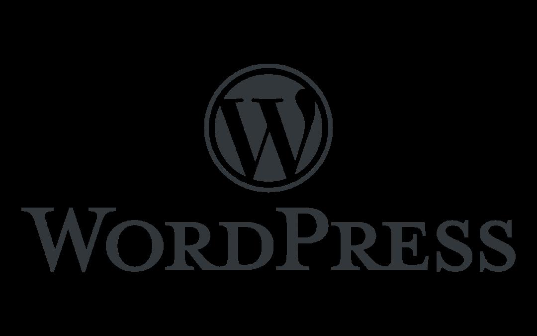 WordPress: Honlapszerkesztés csak profiknak vagy kezdőknek is?